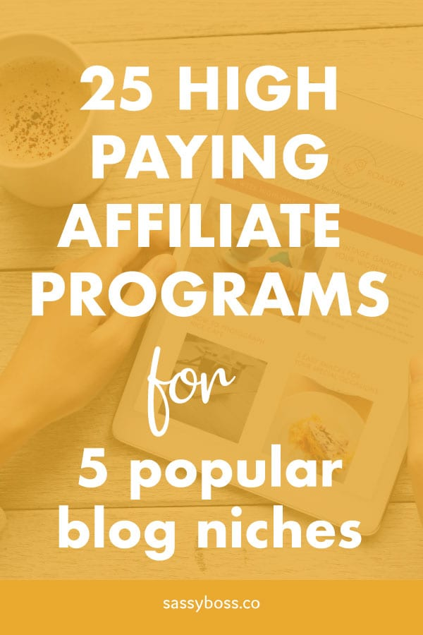 High paying affiliate programs for popular blog niches