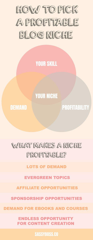 Profitable Blog Niche Infographic