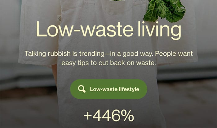 low waste living blog niche