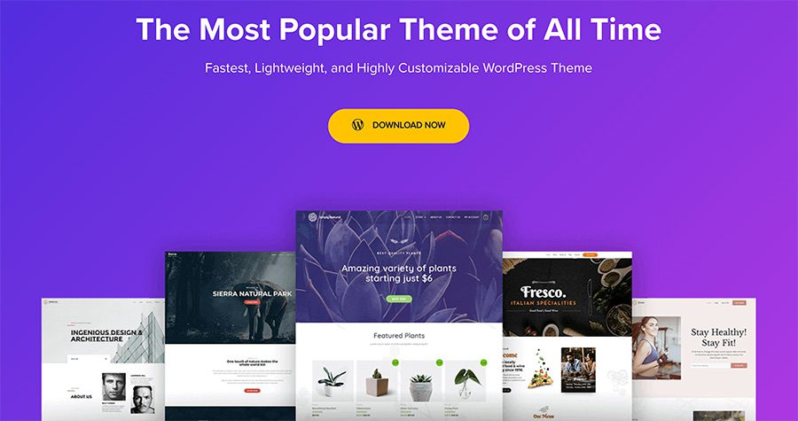 Astra theme - fast WordPress theme